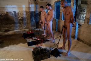 femdom humiliation 2